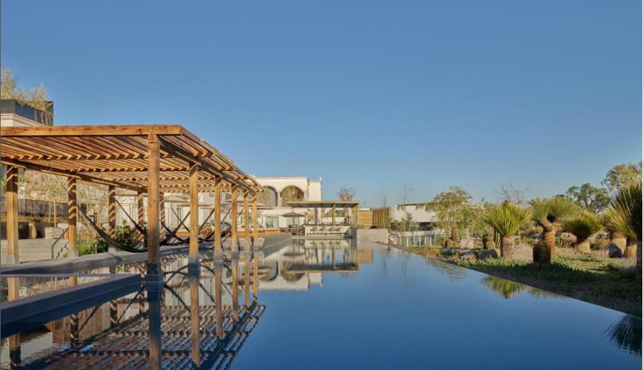 酒店如何通过重大技术和市场投入提高客人忠诚度?