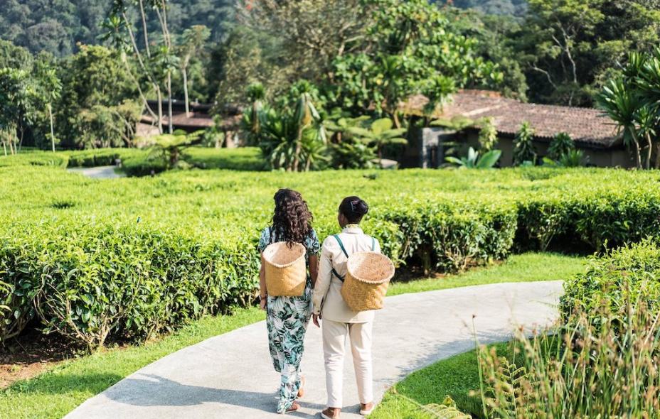 新蜜月旅行时代:新婚夫妇更喜欢冒险而非放松