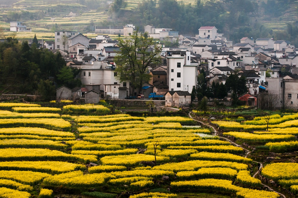 梁建章:乡村旅游是乡村振兴的金钥匙