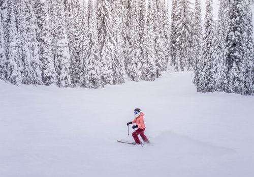 与复星合建并运营滑雪场 世界最大滑雪度假村运营商的中国市场前景会如何?