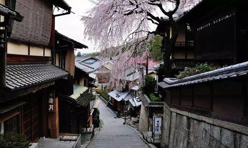 外国OTA攻城略地 日本本土企业拟借助技术和外国游客突围