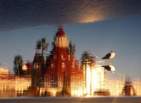美丽多情的科罗那多酒店