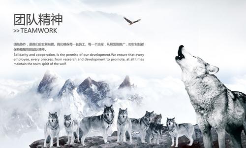 """龚兆庆:打造狼性团队的六""""力"""""""