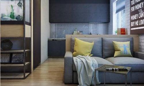 年轻人喜好租赁公寓 但开发商并未积极响应