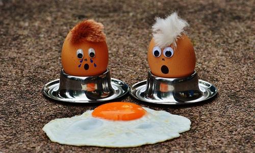 """评""""蓝莓""""事件:不做有缝的鸡蛋 别做闻腥的苍蝇"""