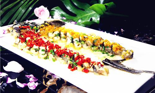 掌握鲟龙鱼的这十几种做法 宴客根本不在话下!