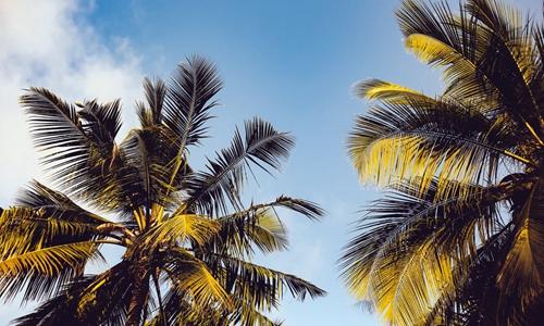 海南:个人可申请开发无居民海岛 旅游娱乐期限25年