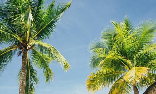 海南无人岛旅游开发 商机与风险并存
