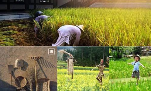 蝶来千宿·自在小庄项目签约 打造禅农文化禅意精品民宿群落