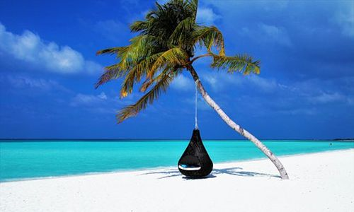 暑期旅游市场迎出行高潮 旅游产品细化、品质需求上升
