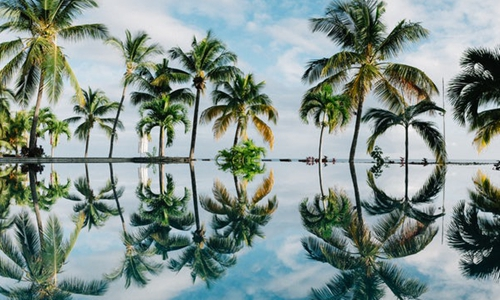 开发海南无人岛 蜈支洲岛20多年投入38亿换来年入12亿