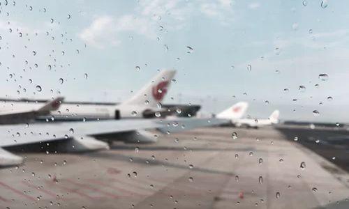 自然灾害致700中国游客滞留日本 票代为何不让他们回家?