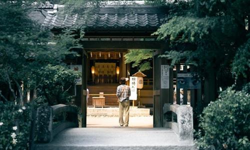 日本观光厅公布网上民宿房源调查结果:约两成涉嫌违法