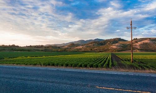 乡村旅游:乡村振兴的核心产业引爆点