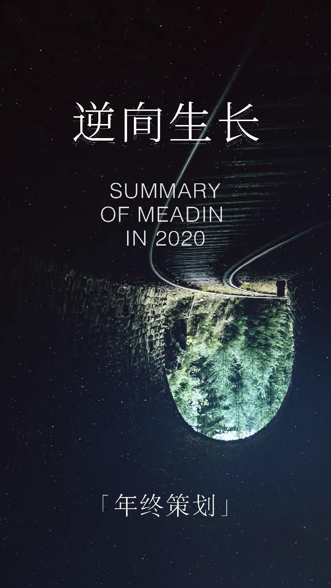 2020迈点年终专题封面(竖.jpg