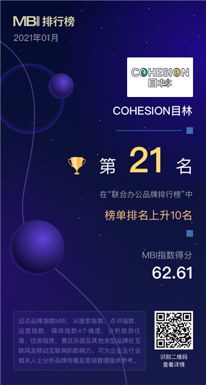 cohesion 目林.png